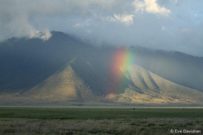 Regenbogen über dem Triangle-Clan-Territorium